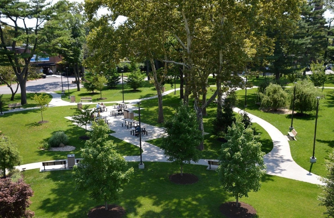 Central-Park-Dusk-Plaza-Walk-Concrete-Tree-Dining-Sycamore-Willow