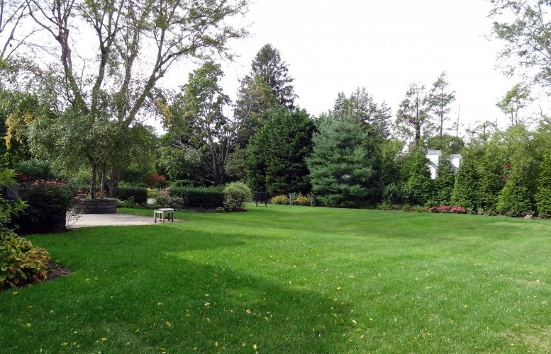 lawn aeration seed lush
